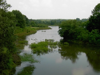north-carolina-river