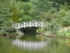 white walking bridge