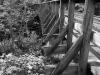 Tain tracks on a bridge